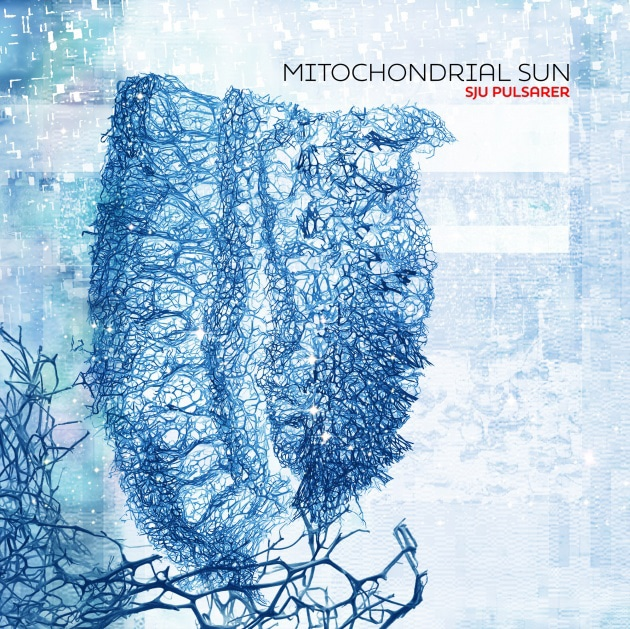 "mitochondrial-sun:-neues-album-""sju-pulsarer""-von-niklas-sundin"