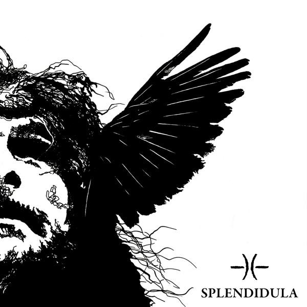 """splendidula:-erster-song-vom-neuen-album-""""somnus"""""""