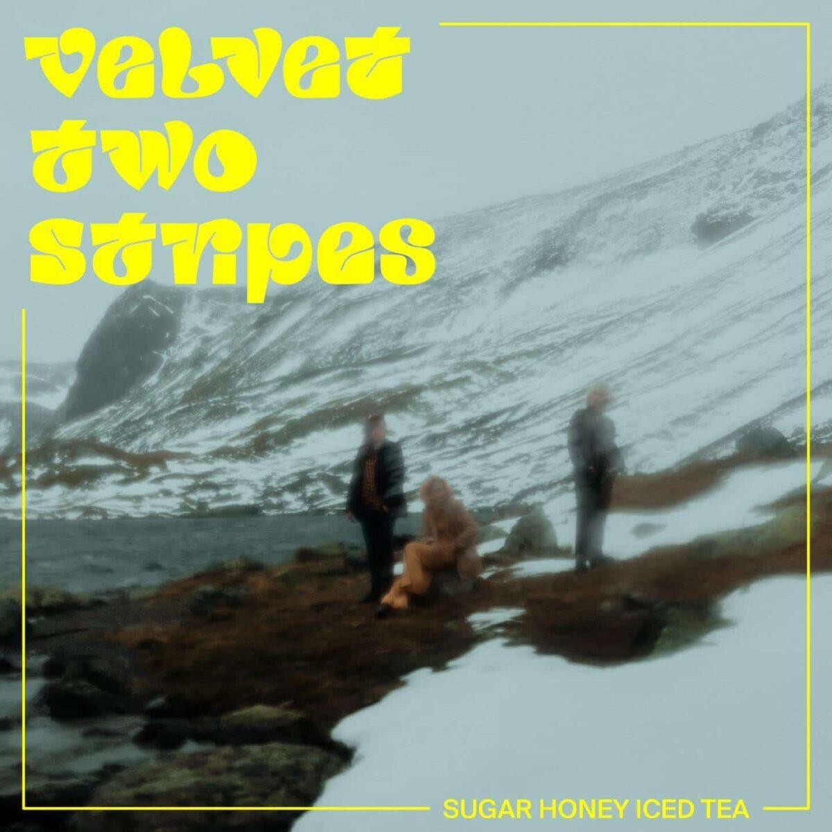 """velvet-two-stripes:-erster-song-vom-neuen-album-""""sugar-honey-iced-tea"""""""